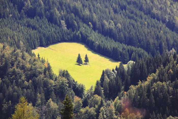 Wald am Schoberpaß