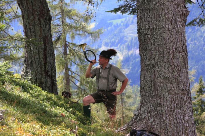 Jäger Wald am Schoberpaß