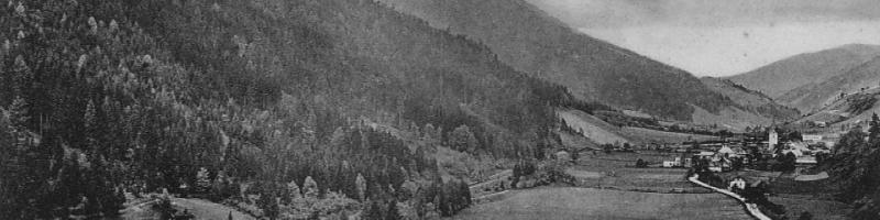 wald am schoberpass 1915